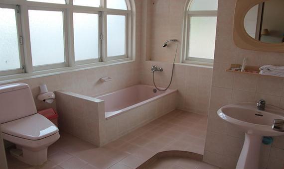 8666c-Windsor-Hotel-bathtub.jpg