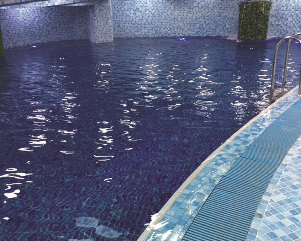 aee42-excel-truasure--swimming.jpg