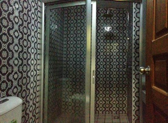 bacfd-shwe-phyu-hotel-shower.jpg
