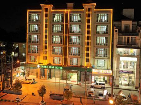 d57d1-Modify.Green-Leaf-Hotel.jpg